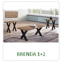 BRENDA 1+2